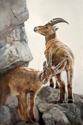 cuadro cabras en la montaña