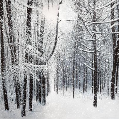 cuadro paisaje bosque nevado